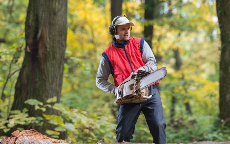 Tips to buy chainsaw and save money without quality compromise