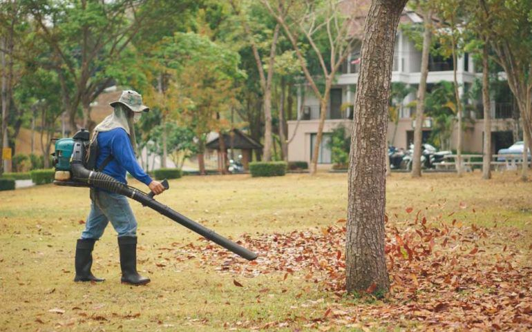 3 Popular Leaf Blowers to Choose From