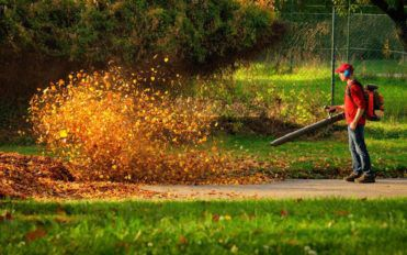 Guide to Choosing the Right Gas Leaf Blower