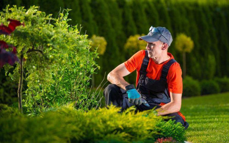 5 creative garden ideas you must try