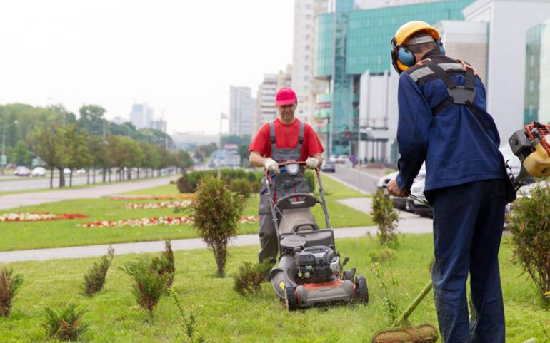 5 powerful edgers to revamp your lawn