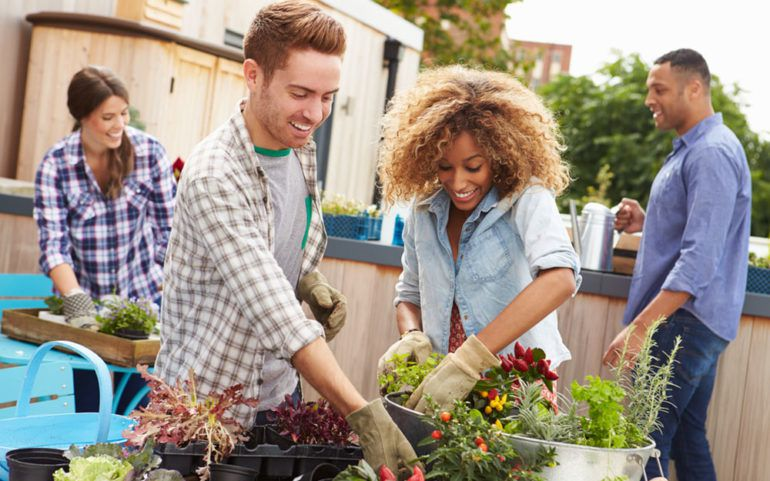 Benefits and  guide to build a community garden