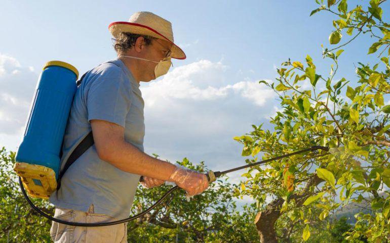 Benefits of organic pest control