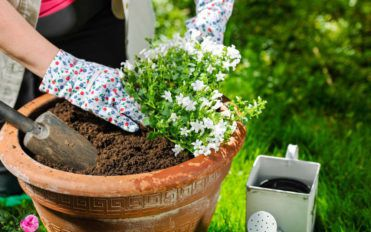 Build your own large garden planter