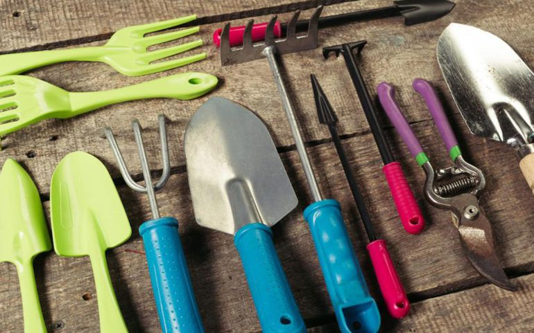 Keep your garden weed-free and clean with right garden tools