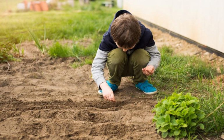 Make your home and garden layouts better with these tips