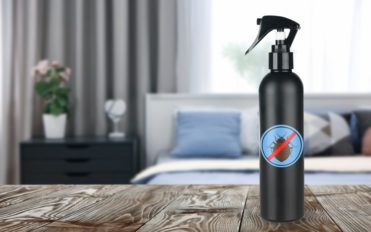 Popular Bed Bug Sprays to Choose From