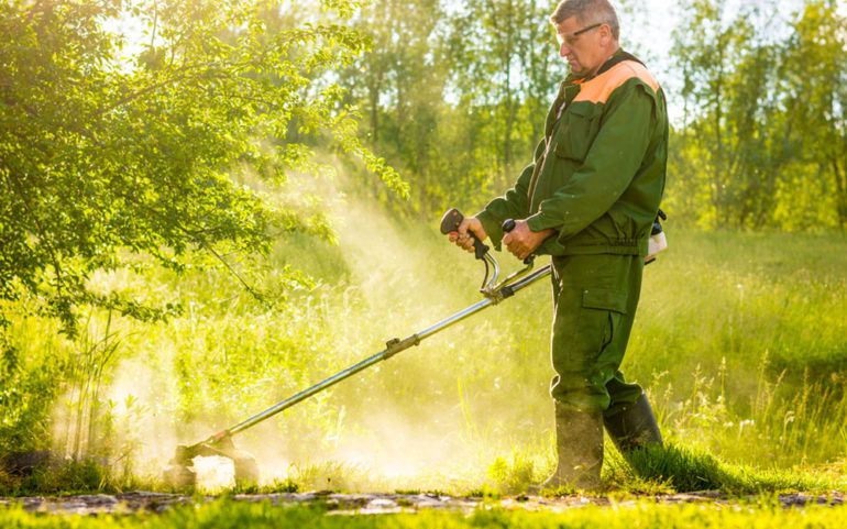 Things to consider before buying brush cutters
