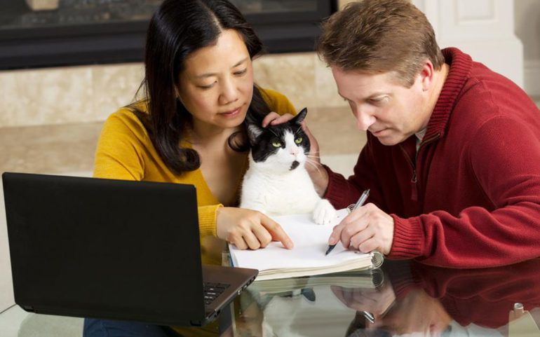 Things you should know about pet insurance