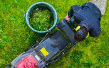 3 popular lawn equipment tools from Stihl