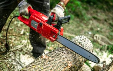 5 Best Chainsaw Brands You Should Buy