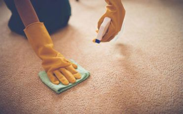 5 benefits of carpet cleaning services