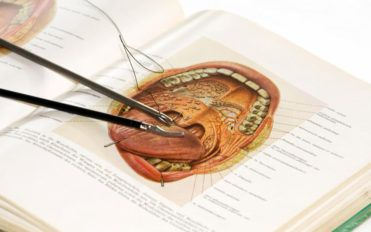 5 fields that need you to know about human anatomy