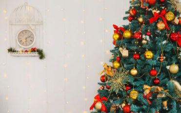 5 ways to get a great deal on a pine Christmas tree