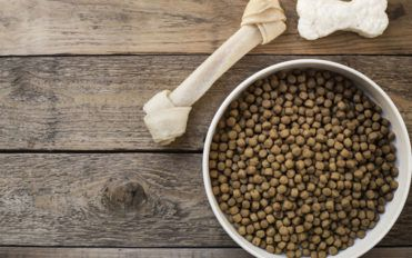 7 popular dog food brands to choose from