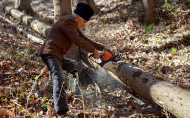 A Guide to Buying the Right Chainsaw