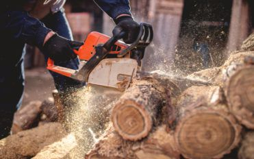 All You Need to Know When You Buy Chainsaws