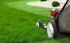 All you need to know about lawn mowers
