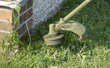 Avoid the growth of weeds using these simple steps