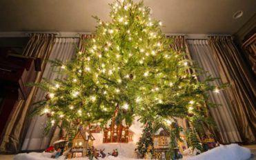Best Deals on Prelit Christmas Trees