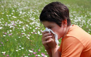 Five food items to fight pollen allergy