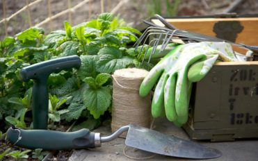 Garden Tools for Gorgeous Outdoors