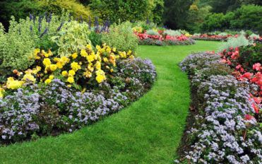 Green spaces and garden remodeling