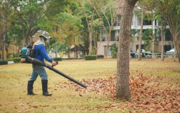 Guide for buying the best leaf blower