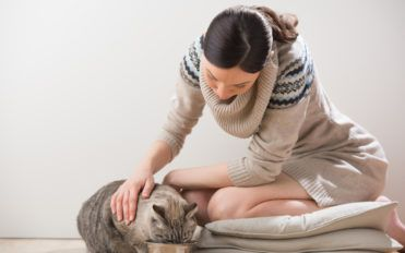 Here's What You Should Avoid Adding to the Cat Food