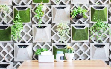 Here's how you can brighten up your ordinary interiors using plants