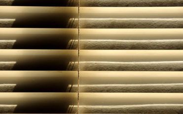 Here's what the best blinds have to offer