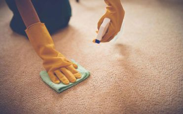 Here's why and how to choose the best carpet stain removers