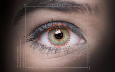 How does the retina work?