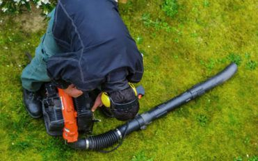 How to choose the right leaf blower for your garden