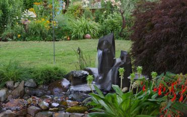How to landscape your own backyard