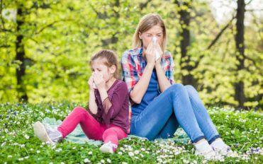 How to prevent pollen allergy