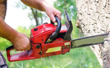 Introduction to chainsaws and STIHL chainsaws