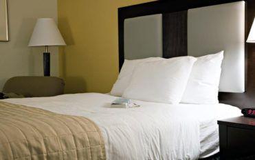 Latex mattresses vs. memory foam mattresses – A comparative study
