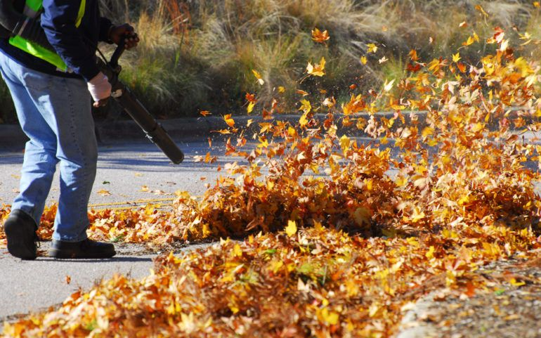 List Of The Best Leaf Blowers In The Market