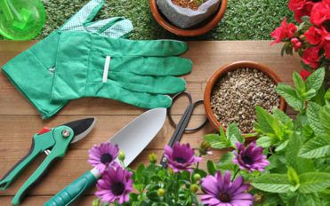 Make your gardening easy and effortless using the right garden tools