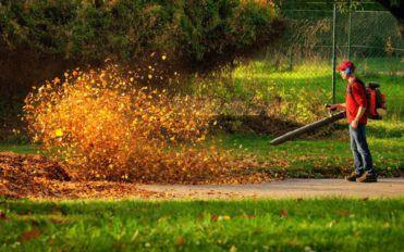 Popular affordable leaf blowers under $100
