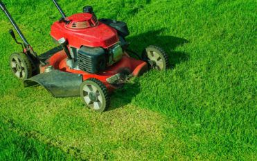 Tips for choosing the best lawn mower