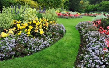 Tips for maintaining a neat and beautiful garden