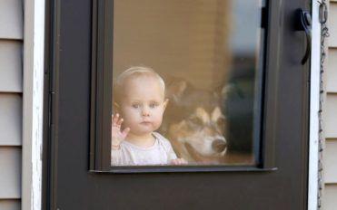 Tips on buying pet doors