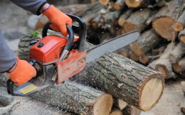 Top Brands to Buy a Chainsaw From
