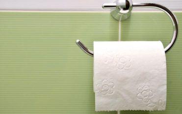 Types of bathroom tissue holders