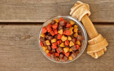 What Kind Of Food Is Best For Your Pet Dog
