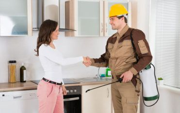Pest control services for home and office